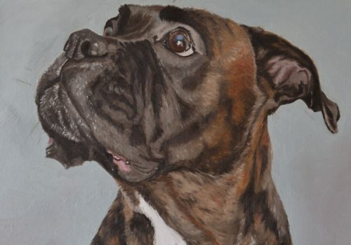 Bella Boxer Oil Painting