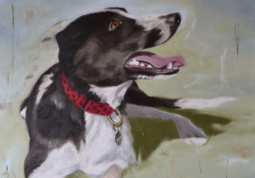 Joey Lurcher Oil Painting