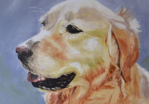 Sally Golden Retriever Oil Painting