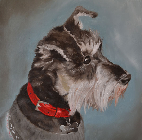 Willow Miniature Schnauzer Oil Painting