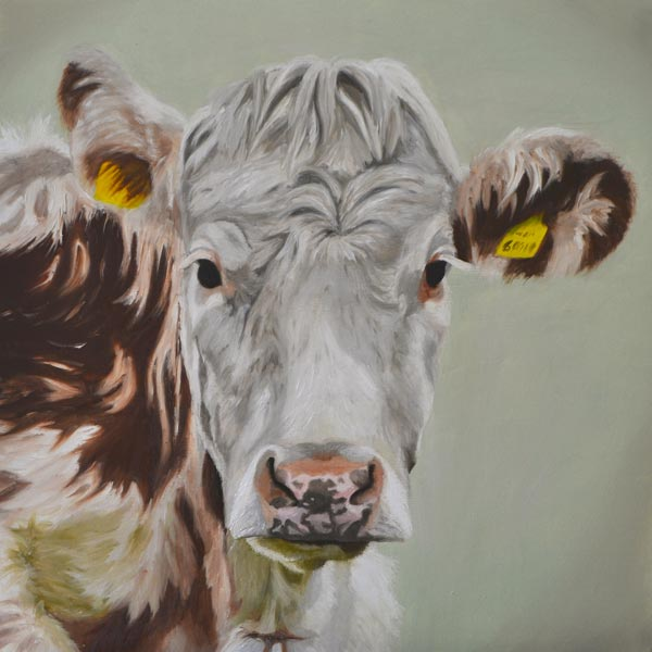 Oil Painting Of Ayrshire Cow