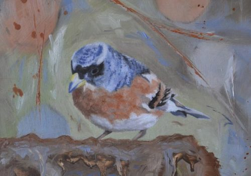 Oil Painting Of A Brambling