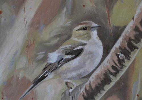 Oil Painting Of A Female Chaffinch