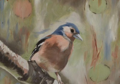Oil Painting Of A Male Chaffinch In Sunlight