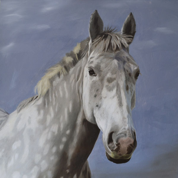 Oil Painting Of Charlie, A Grey Draft Horse