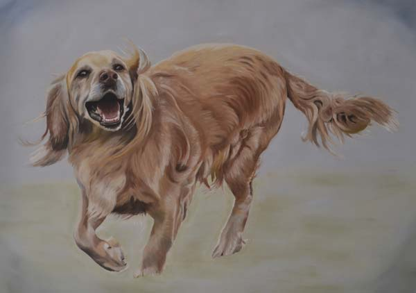 Oil Painting Of Lily, Cocker Spaniel