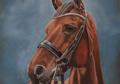 Oil Painting Of Thomas, Bay Horse