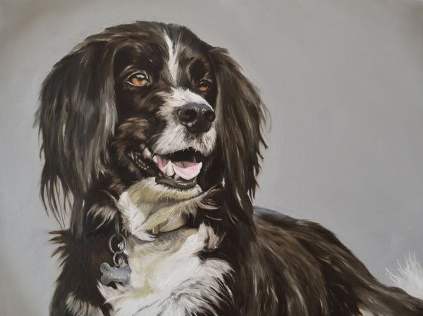 Oil Painting Of Freddie - A Collie, Spaniel, Labrador Cross