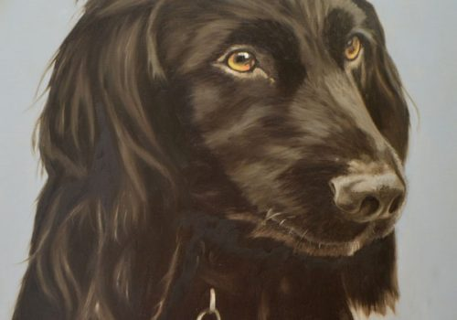 Oil Painting Of Prinz, Cocker Spaniel