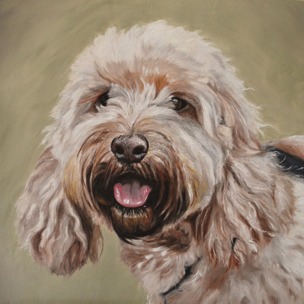 Ellie - oil painting of a cockapoo