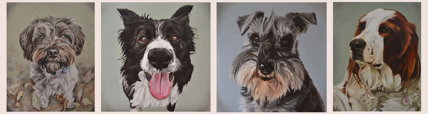 Four dog portraits