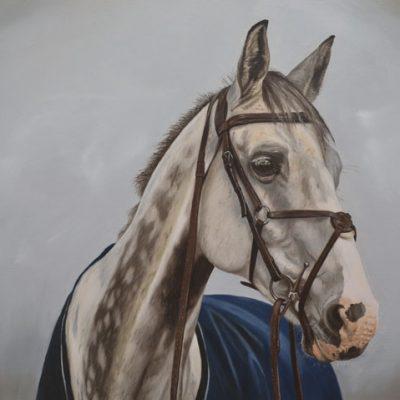 Horse portrait oil painting