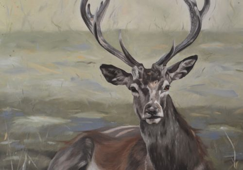 Dignity - Oil Painting Of A Stag