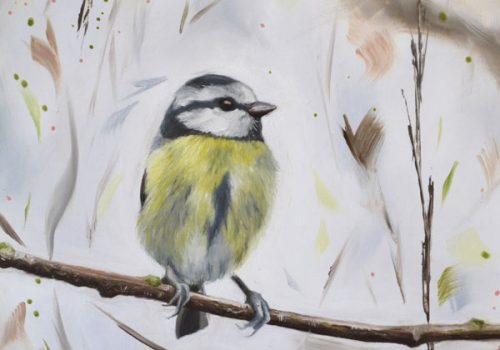 Chipper - Oil Painting Of A Blue Tit