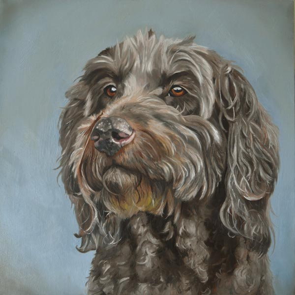 Pippa - labradoodle oil painting