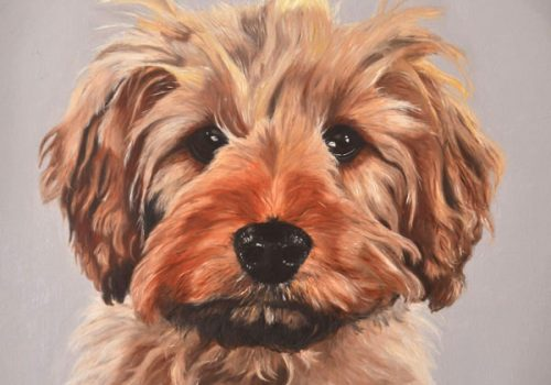 Cavapoo Oil Painting Dog Portrait