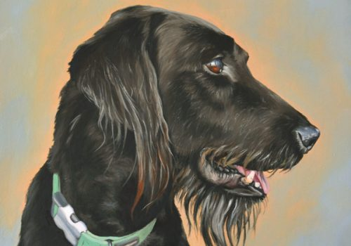 Oil Painting Dog Portrait Of A Black Labradoodle