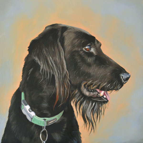 Oil painting of Harry the labradoodle