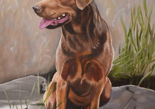 Oil Painting Of Lottie - Chocolate Labrador