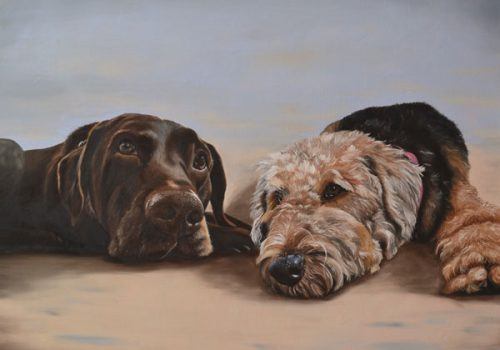 Double Dog Portrait Of Chesta And Hunter