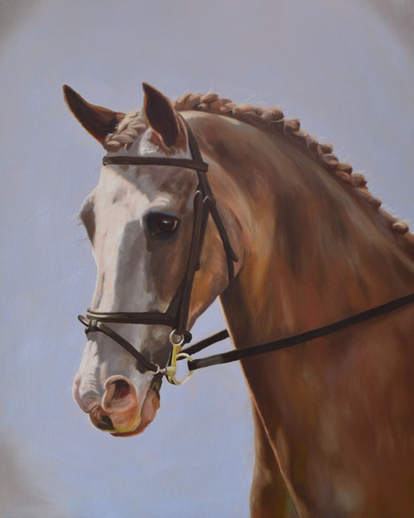 Strawberry Roan Horse Portrait